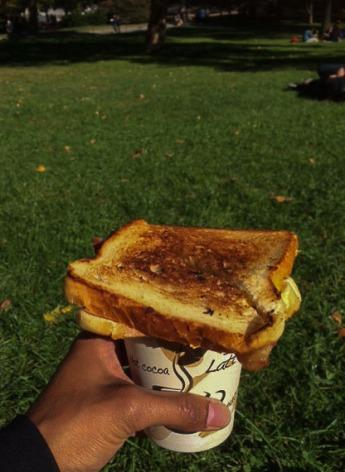 Koffie met een tosti ham/kaas 'american style' in Central Park